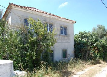 Thumbnail 4 bed detached house for sale in Curvaceiras, Paialvo, Tomar, Santarém, Central Portugal