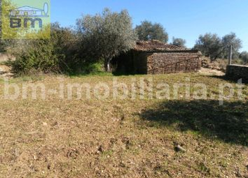 Thumbnail 1 bedroom country house for sale in Maxiais, Benquerenças, Castelo Branco
