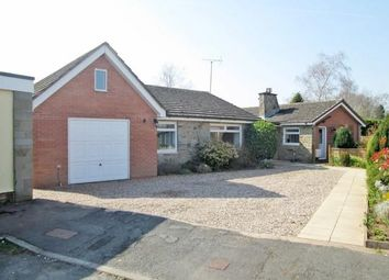 Thumbnail 5 bed bungalow for sale in Brockington Road, Hereford