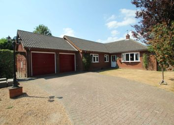 Thumbnail 3 bed detached bungalow for sale in Millfield Close, Blofield, Norwich