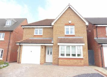 Thumbnail 4 bed detached house for sale in Brindley Close, Stoney Stanton, Leicester