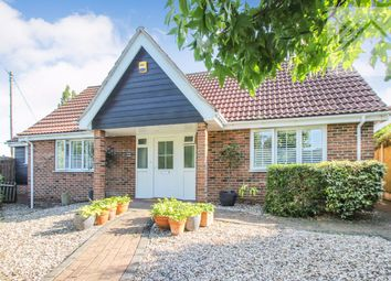 Thumbnail 3 bed bungalow for sale in Goat House Lane, Hazeleigh, Chelmsford