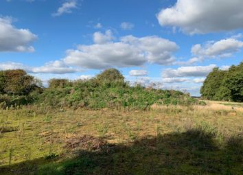 Land for sale in Whitecross, Coates Road, Eastrea, Whittlesey, Peterborough PE7
