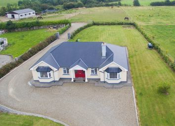 Thumbnail 4 bed detached house for sale in Newbridge, Askeaton, Munster, Ireland