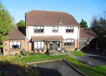 Thumbnail 5 bedroom detached house for sale in Wyldwood Close, Old Harlow, Essex