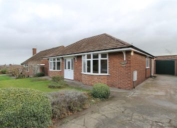 Thumbnail 3 bed detached bungalow for sale in Langer Lane, Wingerworth, Chesterfield