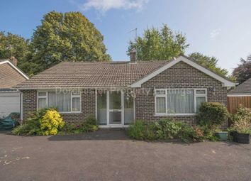 Thumbnail 3 bed bungalow to rent in Catherines Well, Milton Abbas, Blandford Forum