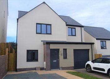 Thumbnail 4 bed detached house to rent in Foxglove Way, Paignton, Devon