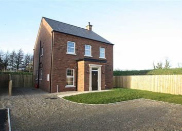 Thumbnail 3 bed detached house for sale in Moss Lane, Ballynahinch