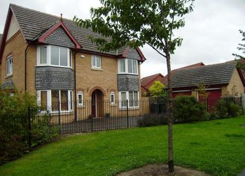 Thumbnail 4 bed detached house to rent in Heron Drive, Brampton Bierlow, Rotherham