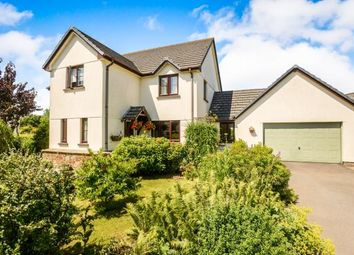 Thumbnail 4 bed detached house for sale in Sheepwash, Beaworthy, Devon