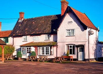 Thumbnail Pub/bar for sale in Lower Street, Norfolk: Diss