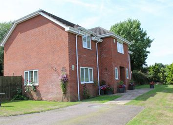 Thumbnail 5 bedroom detached house for sale in Monkton, Monkton, Honiton, Devon
