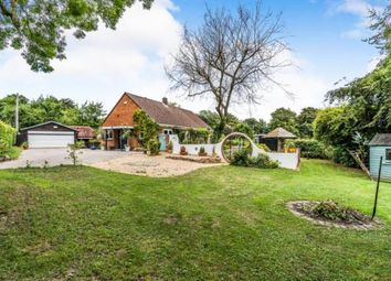 Thumbnail 3 bed bungalow for sale in Whiteparish, Salisbury, Wiltshire