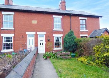 Thumbnail 3 bed terraced house to rent in Pottery Cottage, Mold Road, Ewloe