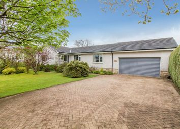 Thumbnail 4 bed detached bungalow for sale in 14 Culbowie Crescent, Buchlyvie