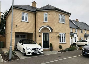 Thumbnail 4 bed detached house to rent in Brimsdown Avenue, Basildon, Essex