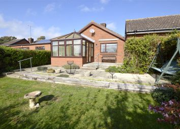 Thumbnail 2 bed detached bungalow for sale in Fox Close, Stroud, Gloucestershire