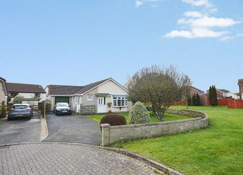 Thumbnail 3 bed detached bungalow to rent in Hyde Court, Yeovil