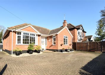 Thumbnail 3 bed detached bungalow for sale in Reading Road, Wokingham, Berkshire