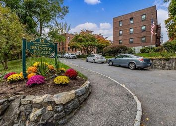 Thumbnail Property for sale in 14 S Broadway, Irvington, New York, United States Of America