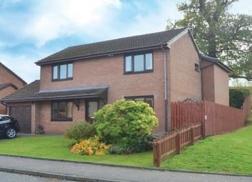 Thumbnail 4 bedroom property to rent in Gryfebank Avenue, Houston, Johnstone