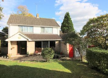 Thumbnail 5 bed detached house for sale in Coniston Grove, Sun Hill Crescent, Alresford