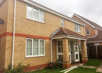 Thumbnail 4 bedroom detached house to rent in Magnolia Close, Beck Row