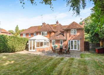 Thumbnail 4 bed semi-detached house for sale in South Warnborough, Hook, Hampshire