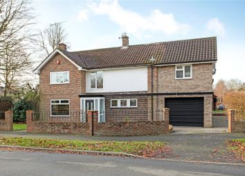 Thumbnail 5 bed detached house for sale in Irwin Drive, Horsham, West Sussex