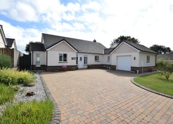 Thumbnail 4 bed detached house for sale in Mill Road, Bradworthy, Holsworthy