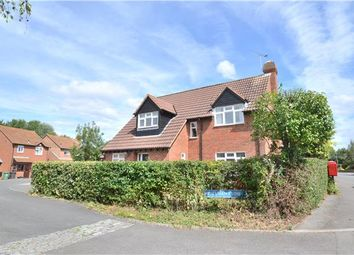 Thumbnail 4 bed detached house to rent in Valerian Close, Abbeymead, Gloucester