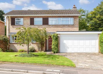 Thumbnail 4 bed detached house for sale in Great Ellshams, Banstead