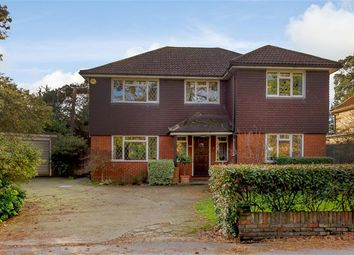 Thumbnail 4 bed detached house for sale in Pines Road, Bromley