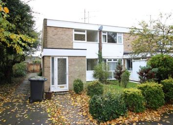 Thumbnail 4 bed semi-detached house to rent in London Road, Biggleswade