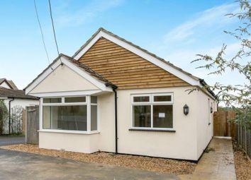 Thumbnail 4 bed bungalow to rent in Rownhams Road, North Baddesley, Southampton