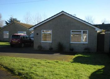 Thumbnail 3 bed detached bungalow to rent in Oxencroft, Shaftesbury, Dorset