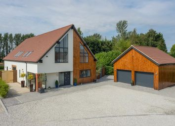 Thumbnail 4 bed detached house to rent in The Forstal, Canterbury