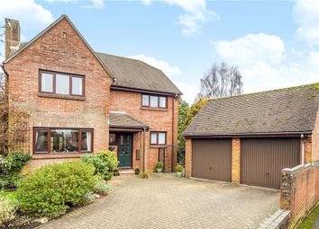 Thumbnail 4 bed detached house for sale in Sycamore Close, Sixpenny Handley, Salisbury, Wiltshire