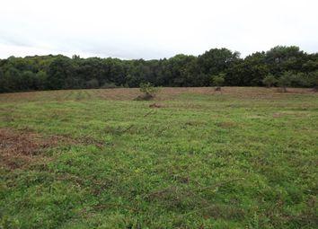 Thumbnail Land for sale in Honey Lane, Ashburnham