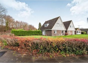 Thumbnail 4 bed bungalow for sale in Walcot Walk, Netherton, Peterborough, Cambridgeshire