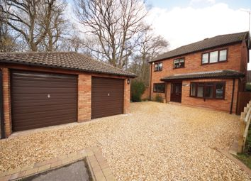 Thumbnail 4 bed detached house for sale in Goose Green, Hook