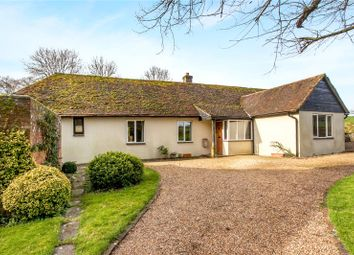 Thumbnail 3 bed detached bungalow for sale in Church Lane, Exton, Hampshire