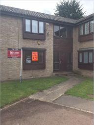 Thumbnail Studio to rent in Waddington Court, Hull