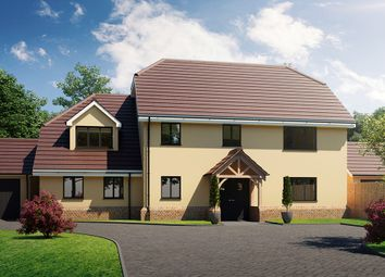 Thumbnail 6 bedroom detached house for sale in Hoe Lane, Nazeing, Waltham Abbey