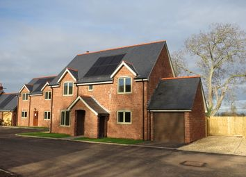Thumbnail 4 bed detached house for sale in Church Lane, Carhampton, Minehead