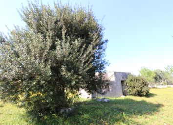 Thumbnail 1 bed country house for sale in Contrada Colacurto, Carovigno, Brindisi, Puglia, Italy