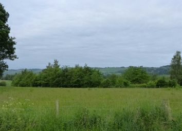 Thumbnail Land for sale in Westown, Carse Of Gowrie, Perthshire