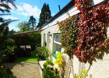 Thumbnail 2 bed detached bungalow for sale in Llanboidy, Whitland