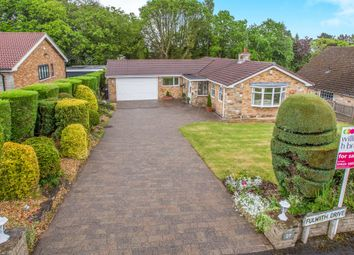 Thumbnail 4 bed detached house for sale in The Drive, Yew Tree Lane, Harrogate